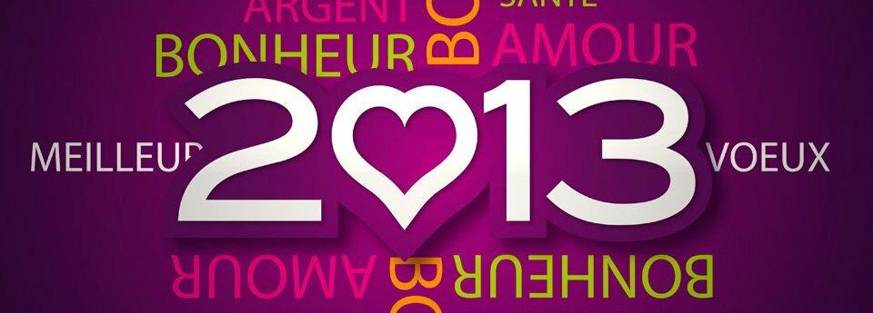 Voeux-2013-cobratex