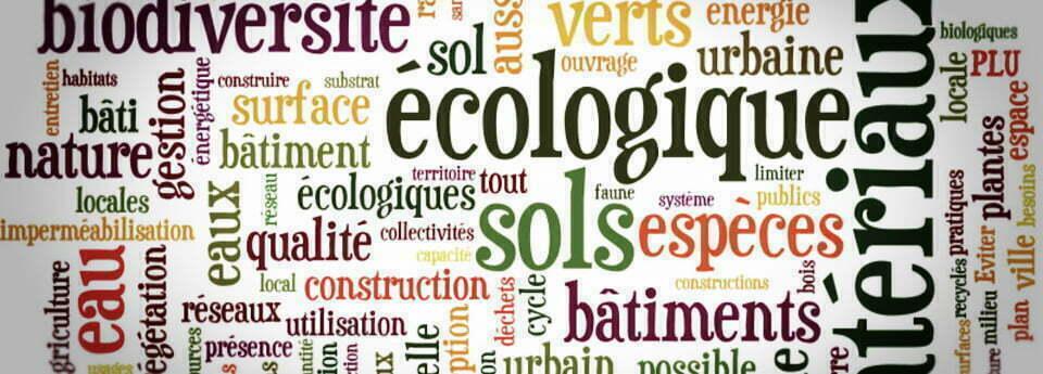 Transition-ecologique-cobratex